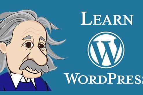 Learn WP